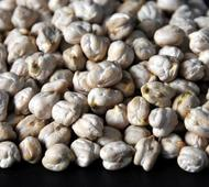 Higher output likely to keep chana flat