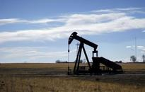 Oil down on dollar, rate hike fear; little impact from rig count drop
