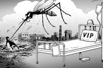 Dengue outbreak in West Bengal leaves 23 dead, dozens affected