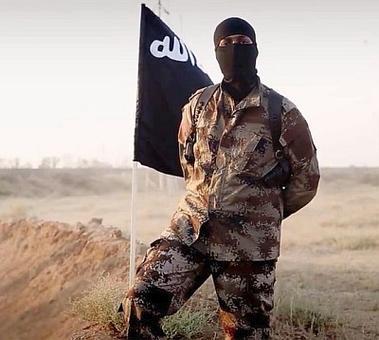 India not immune to ISIS threat, says UAE