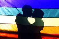 Monitoring gay rights situation in India: US