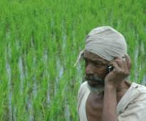 Fertile ground for national agri mkt as govt allocates Rs 200 cr