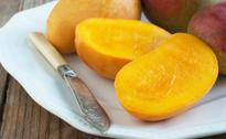 Delhi's Mango Festival to Begin on July 3