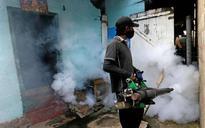300 killed in dengue outbreak in Sri Lanka