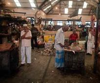Maharashtra govt to HC: Eating beef not a fundamental right