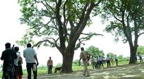 Badaun cousins committed suicide after one caught in intimate act: CBI
