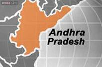 Expert panel suggests Andhra Pradesh capital should function from 3 places